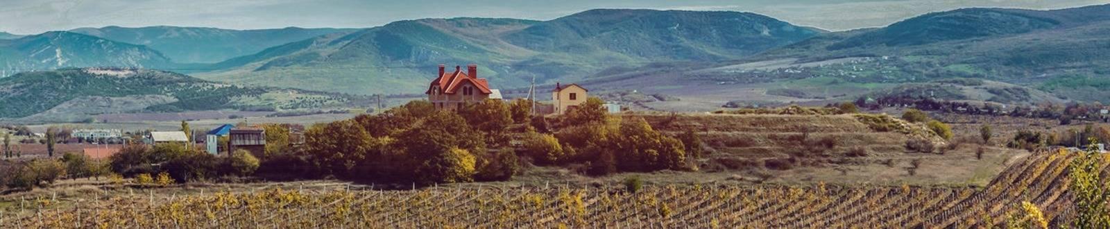 Виноградник Золотая Балка